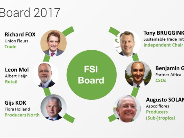 FSI Board 2017