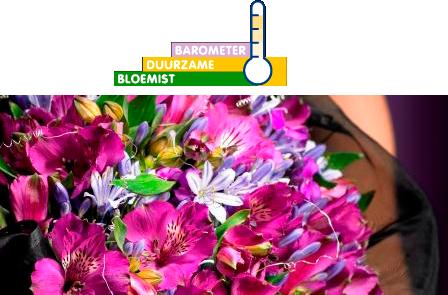 barometer florists